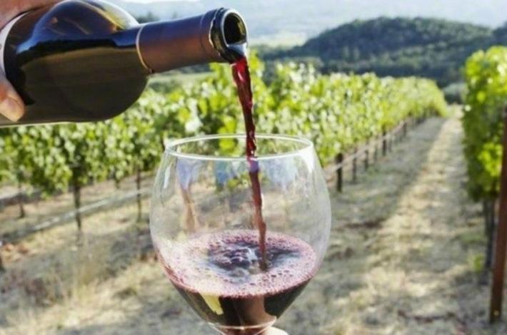 Moravské ochutnávání vín v Hustopečích